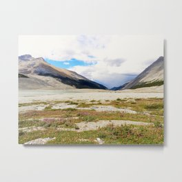 View from Icefields Metal Print