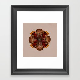 Lilium Insanis Framed Art Print