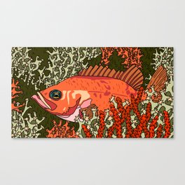 Fish in coral reef Canvas Print