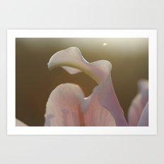 Lamenting Lily Art Print