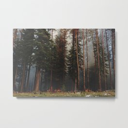 Oregon Forest Control Fire Metal Print