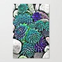 succulents Canvas Prints featuring succulents by Sara Eshak