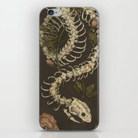 snake iPhone & iPod Skins featuring Snake Skeleton by Jessica Roux