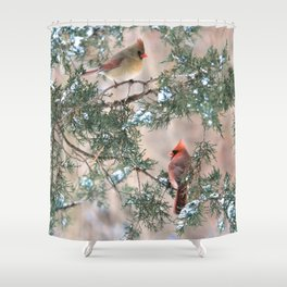 Winter Pair Cardinals (sq) Shower Curtain