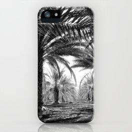 Vintage Palms Trees : Coachela Valley California 1937 iPhone Case