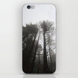 MYSTIC TREES iPhone Skin