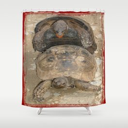 Humorous Mating Tortoises Shower Curtain