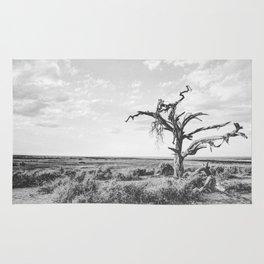 DESERT XI Rug