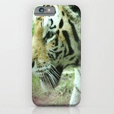 Stalk Slim Case iPhone 6s
