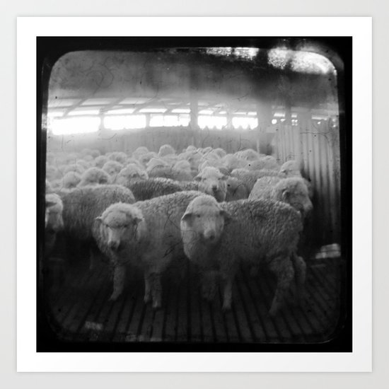 The Holding Pen - Through The Viewfinder (TTV) Art Print