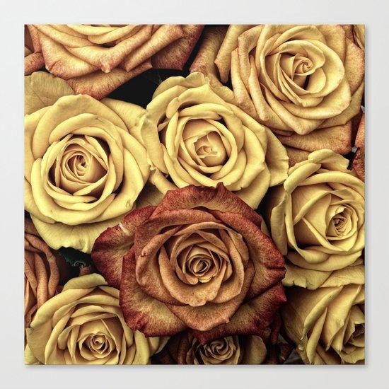 Roses jaunes Canvas Print