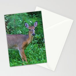 Deer By The Road Stationery Cards