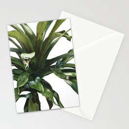 Glass Frogs Stationery Cards