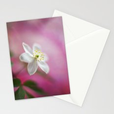 Tender Light Stationery Cards