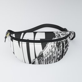 Buenos Aires Fanny Pack