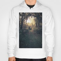 forrest Hoodies featuring Forrest Haven  by Night Flyer Abstract Arts