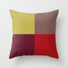 Winter Windowpane Throw Pillow