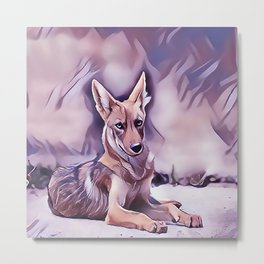 The Desert Coyote Metal Print