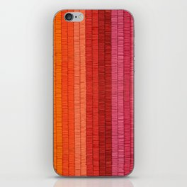 Band of Rainbows iPhone Skin