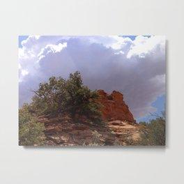Dwarf Cedar, Navajo National Monument, Northern Arizona 2013 Metal Print