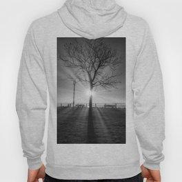 Tree of Life VII Hoody