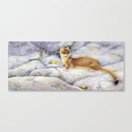 Mighty Hunter-Stoat Canvas Print