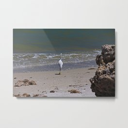 A Sanibel Dance Metal Print