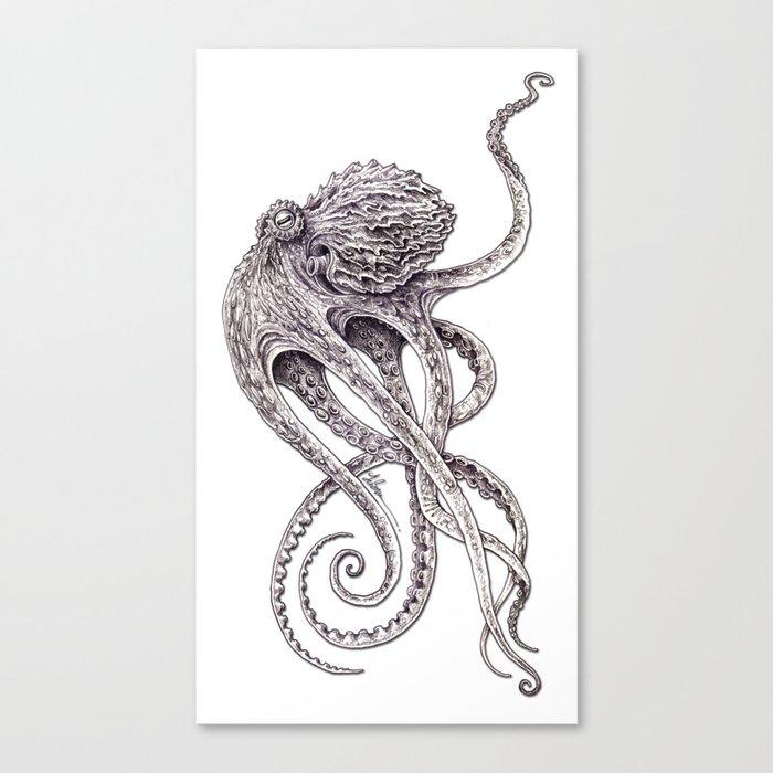 Cephalopod Canvas Print