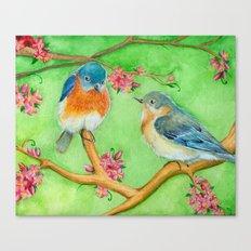 Bluebirds Canvas Print