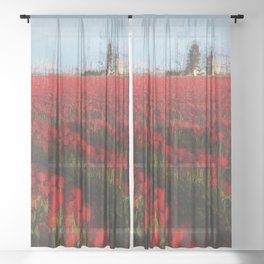 Tulip Fields Sheer Curtain