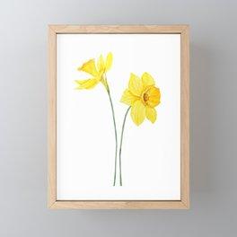 two botanical yellow daffodils watercolor Framed Mini Art Print