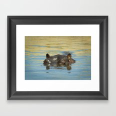 Hippo Framed Art Print