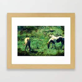 Buckskin and Pinto Framed Art Print
