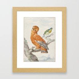 Two Exotic Birds - Vintage Tropical Decor Framed Art Print