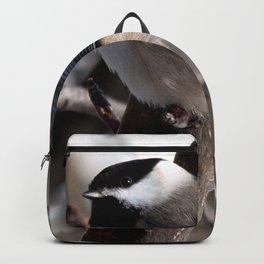 Mesange Backpack