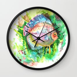 Aquarium Fish, Green Rainbow colors, Discus, Pink Green Illustration Wall Clock