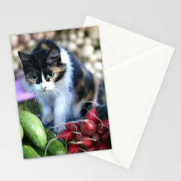 Cat between vegetables Market Marocco #society6 Stationery Cards