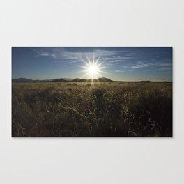 Sun Over the Grass Canvas Print