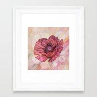 poppy Framed Art Prints featuring Poppy by Annike
