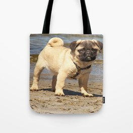 small dog pug baby on water and beach Tote Bag