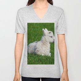 A Sleepy Newborn Lamb In A Field Unisex V-Neck