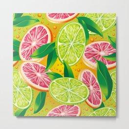 Citrus background Metal Print
