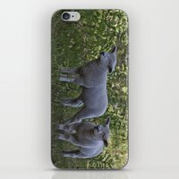 silence of the lambs iPhone & iPod Skins featuring Little Lambs by Dawn OConnor