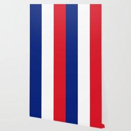France Flag Wallpaper