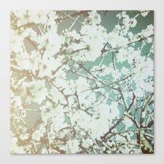 spring mediterranean almond flowers - golden orange Canvas Print