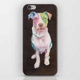 American Bull Terrier iPhone Skin