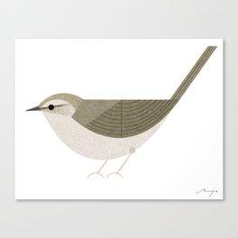 Japanese bush warbler Canvas Print