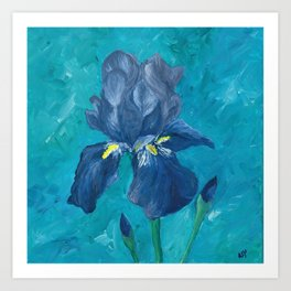 Purple Iris Artwork Art Print
