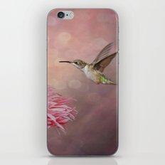 A Hummingbirds Dance iPhone & iPod Skin