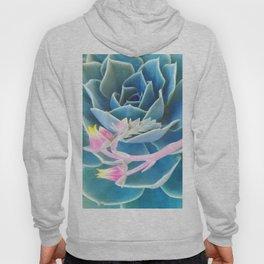 Bold Succulent Hoody